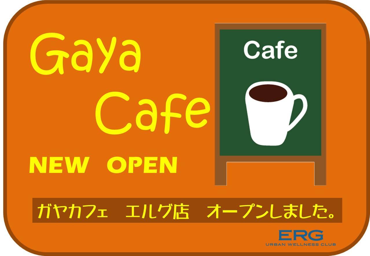 Gaya Cafe エルグ店プレオープンのお知らせ